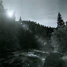 Boulder Creek by Bill Wetmore