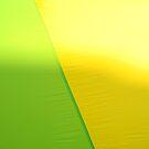 Lime and Lemon by Lynn Moore