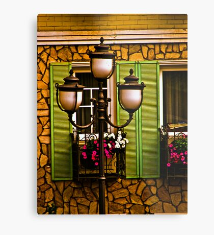 Light & window Metal Print