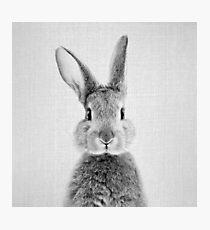 Kaninchen - Schwarz & Weiß Fotodruck
