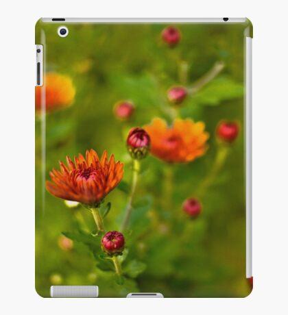 Fall Fantasy  iPad Case/Skin