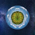 Sunflower Planet in Space by TJ Baccari Photography