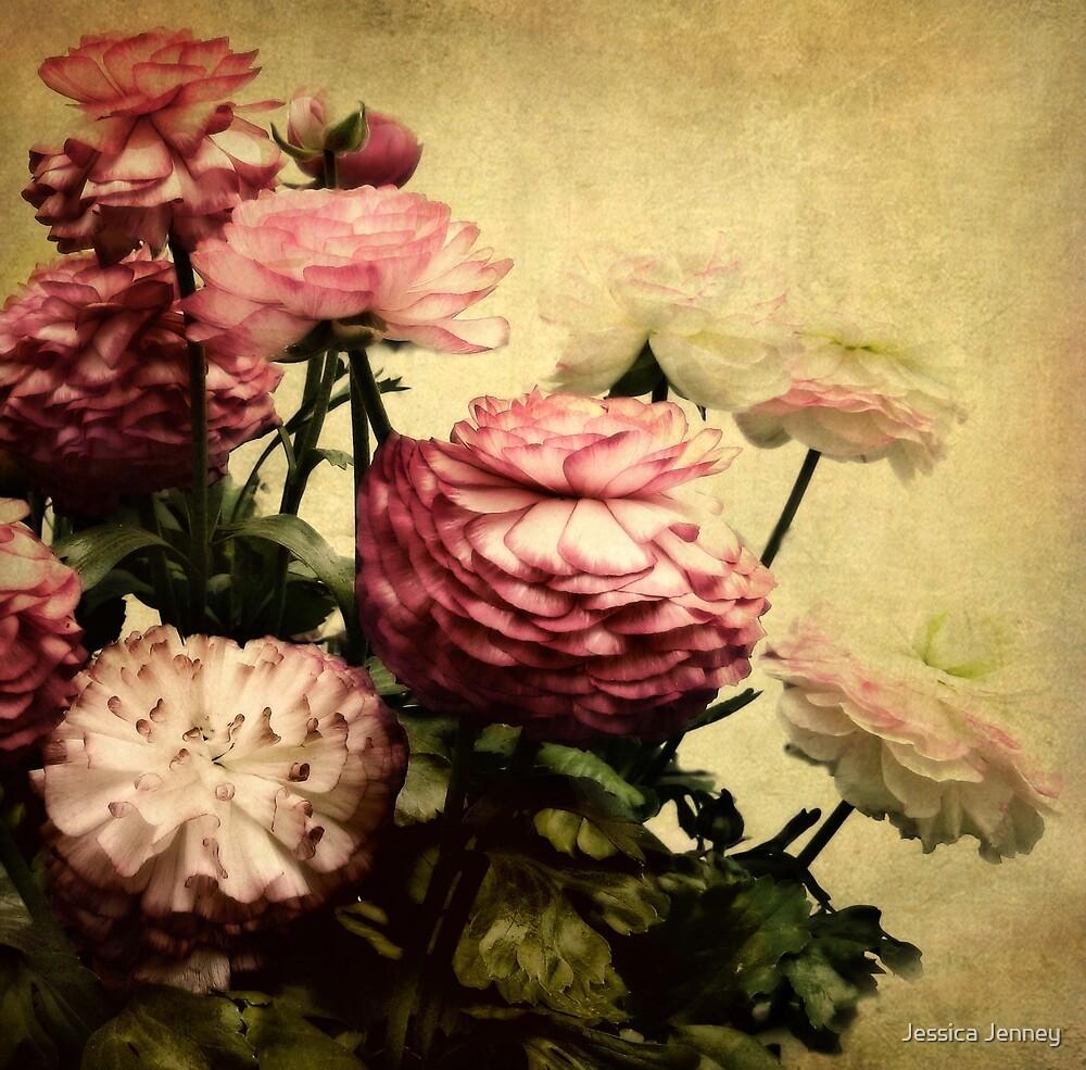 Ranunculus by Jessica Jenney