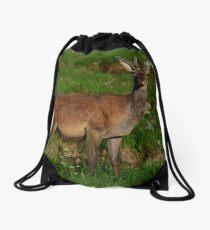 Red Deer Drawstring Bag