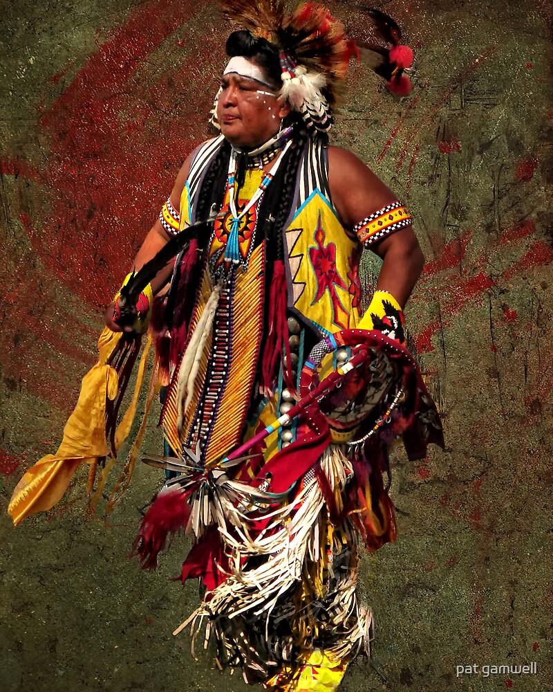Thunder Chief by pat gamwell