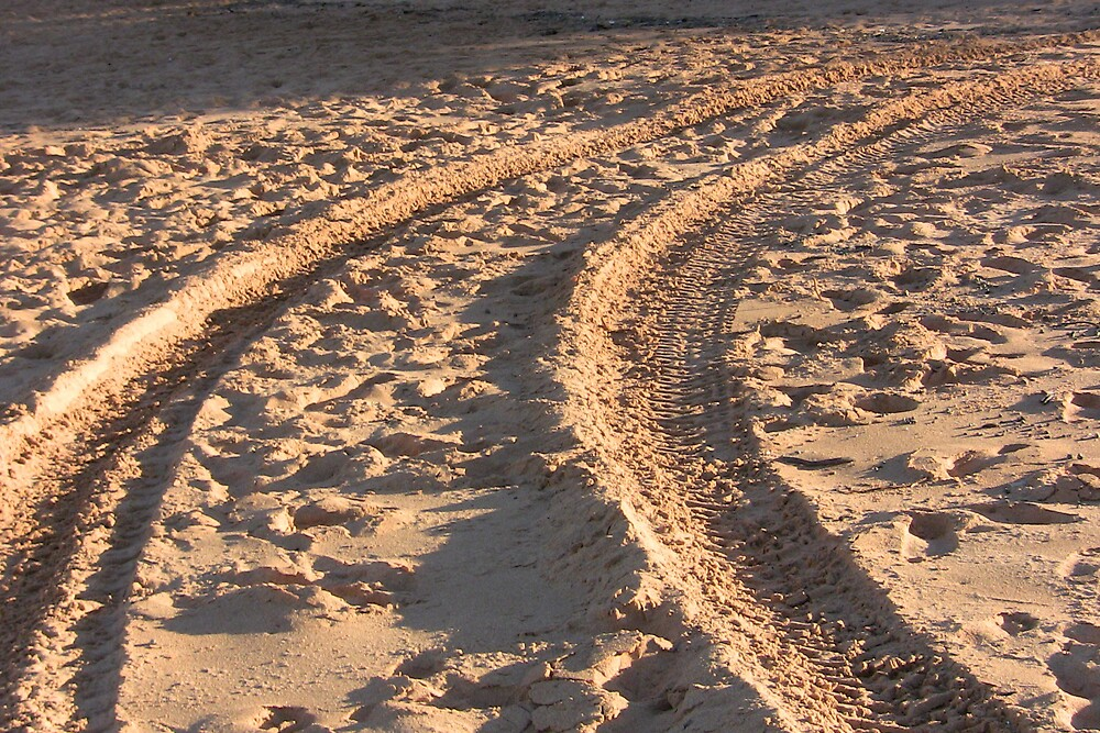 Making Tracks by christophm