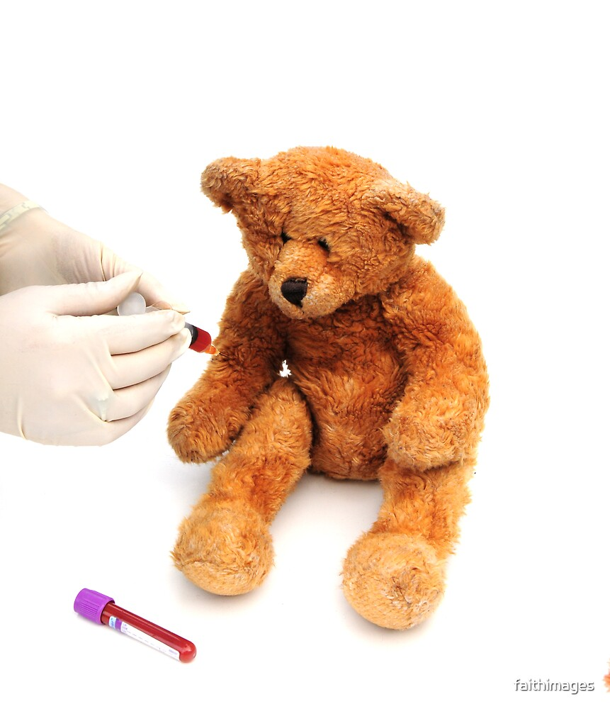 Brave bear having a blood test! by faithimages