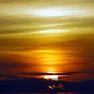 Monsoon Season Sunrise by © Loree McComb