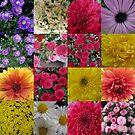 The Wonderful World Of Flowers by Linda Miller Gesualdo