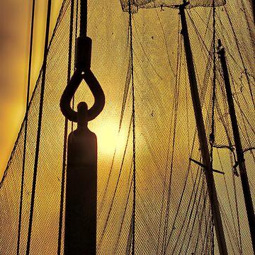fishing net by bonardelle