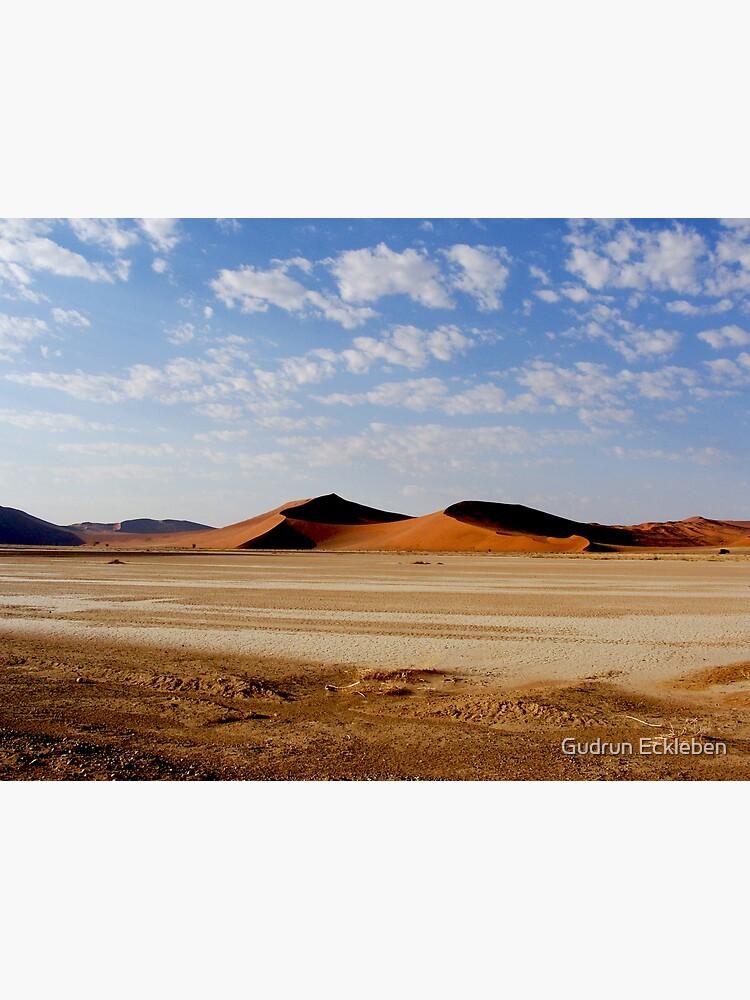 Namib Naukluft Park by gudders