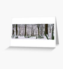 Spring vs Snow Greeting Card