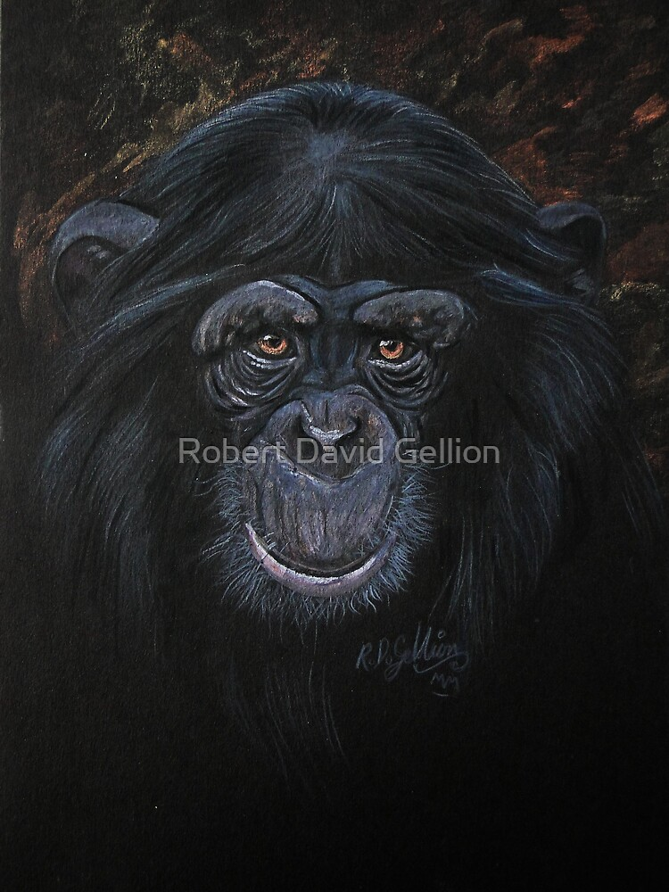Chimp by Robert David Gellion