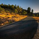 Evening Road by Ralph Goldsmith