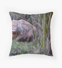 Australian Wildlife - Wombat Throw Pillow