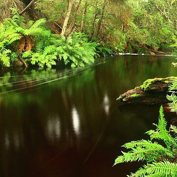 silent running...Detention River on Newhaven track by phillip24