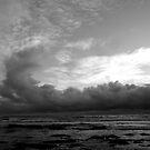 """Dragon Storm Cloud"" by Tim&Paria Sauls"