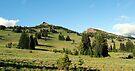 Pristene Alpine Meadow by Tori Snow