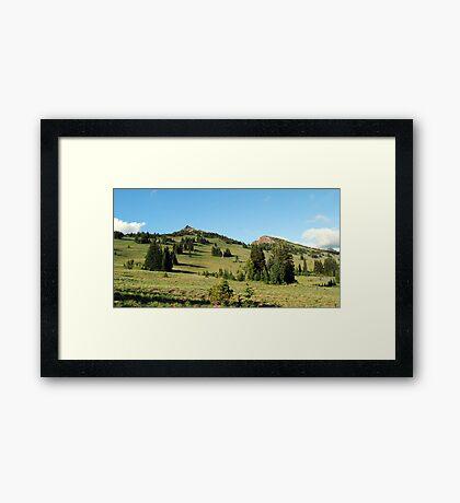Pristene Alpine Meadow Framed Print