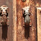 Antique wooden door with hand knockers by Anna Lemos