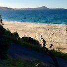 From Seal Rocks by jayview