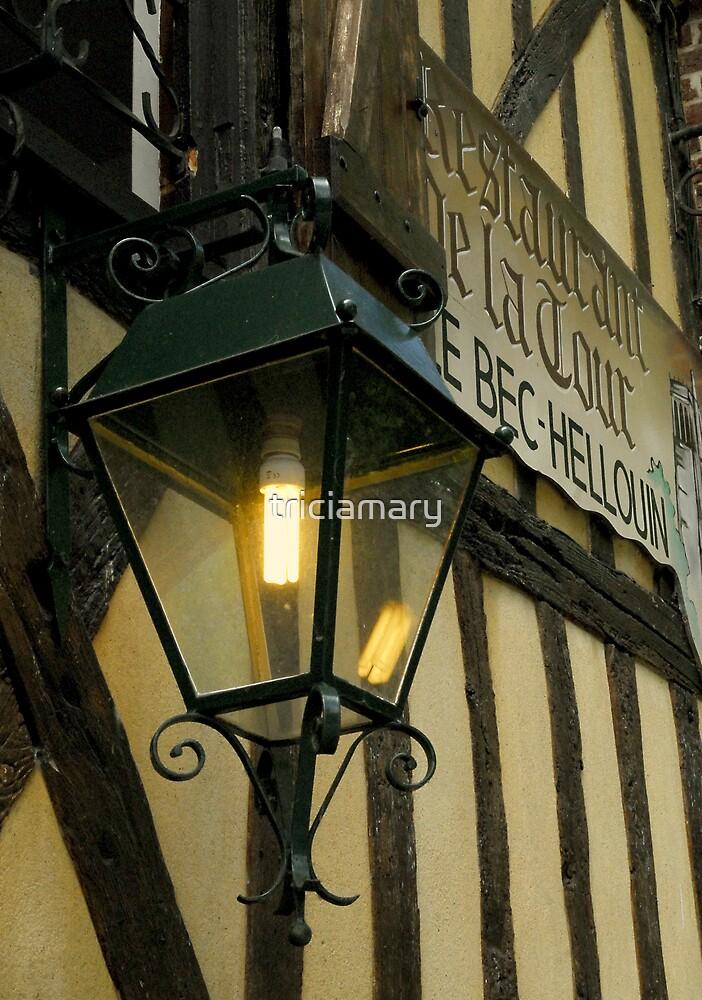 Restaurant de la Tour, Le Bec Hellouin by triciamary