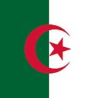 Flag of Algeria by Rich Anderson