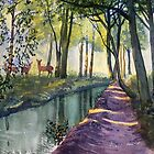 Summer Shade in Lowthorpe Wood by Glenn Marshall
