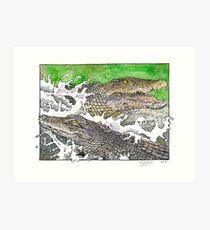 Saltwater crocs Art Print