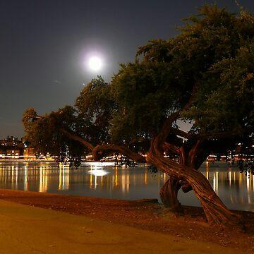 LAKE MERRIT @ NIGHT by michael-winkler