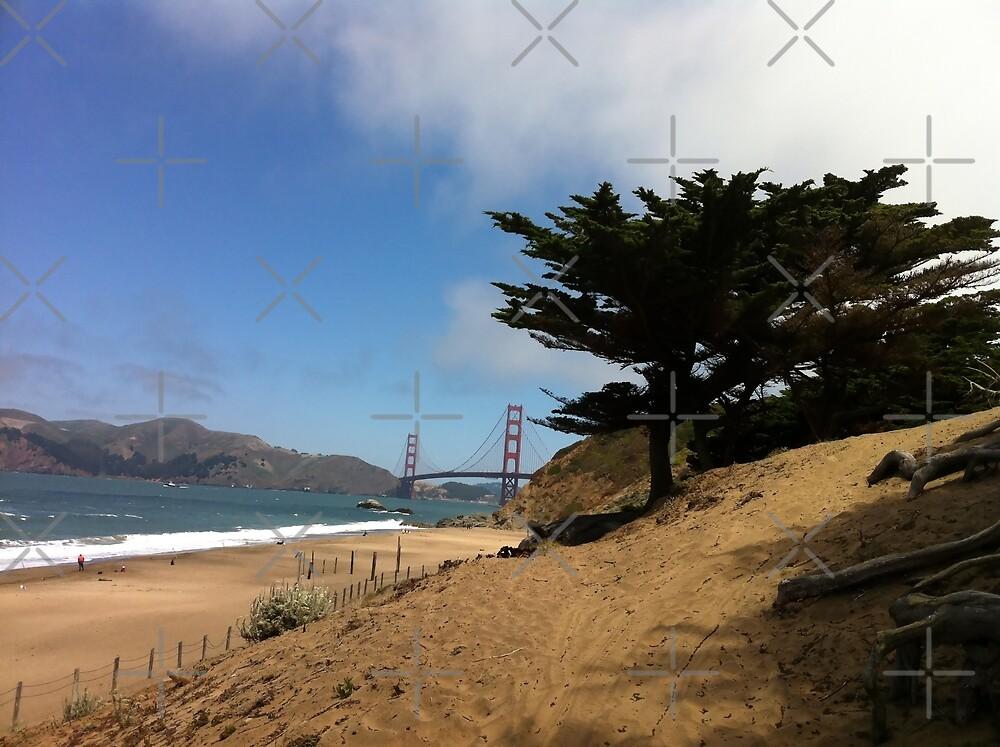 California - Those Golden Dreams by csegalas