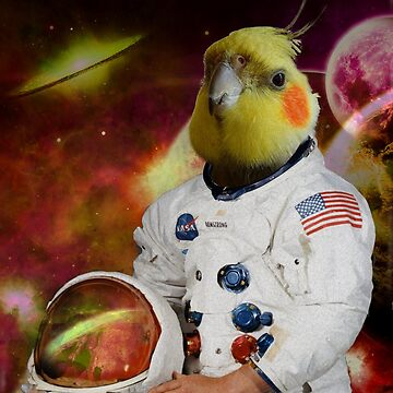 astronaut cockatiel by FandomizedRose