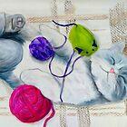 Kitten in Bliss by Marcella Chapman