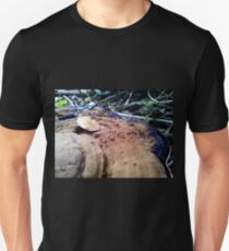 Dirty Cap T-Shirt