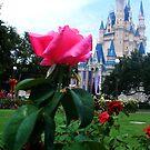 Castle Rose Garden by L.D. Franklin