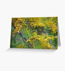 Dreamy Photo . 7 ★★★★★ .  ####  Painting by   autumn  ####.  Norway. 2011. « Arrête-toi, tu es si b»  . Views: 4471 . Featured Avant - Garde Art. Greeting Card