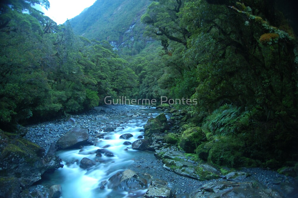 New Zealand River at Dawn by Guilherme Pontes