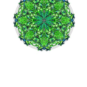 Flower of life mandala by Manafold