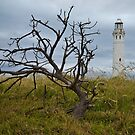 Cape Leeuwin Lighthouse 1 by Werner Padarin