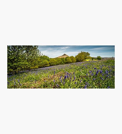 Roseberry Topping Bluebells Photographic Print