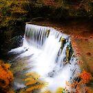Autumn falls by Jon Tait