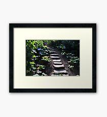 Up the stony path Framed Print