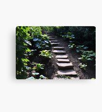 Up the stony path Canvas Print