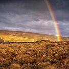 A Dales Rainbow by RamblingTog