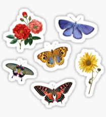 Summertime Sticker Set Sticker
