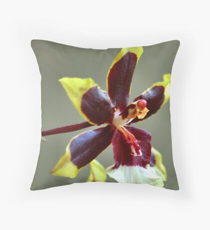 orchid species - ONCIDIUM Throw Pillow