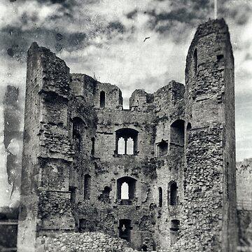 Raglan Castle by pursuits