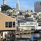 San Francisco, a View From pier 39 by Igor Pozdnyakov