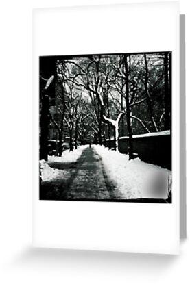 «Nueva York - Snowy Fifth Avenue» de csegalas