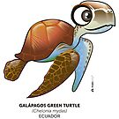 Galapagos Green Turtle by makikelly